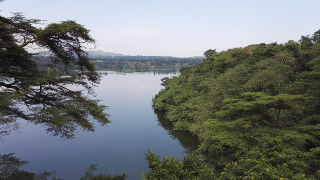 Looking out at the Nile in Jinja